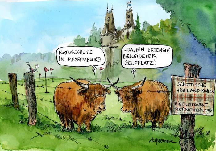 highlander_meeseburg
