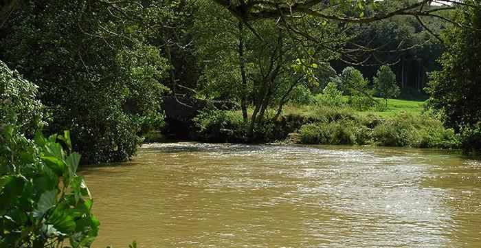 Mouvement écologique » Projet de plan de gestion des eaux ...