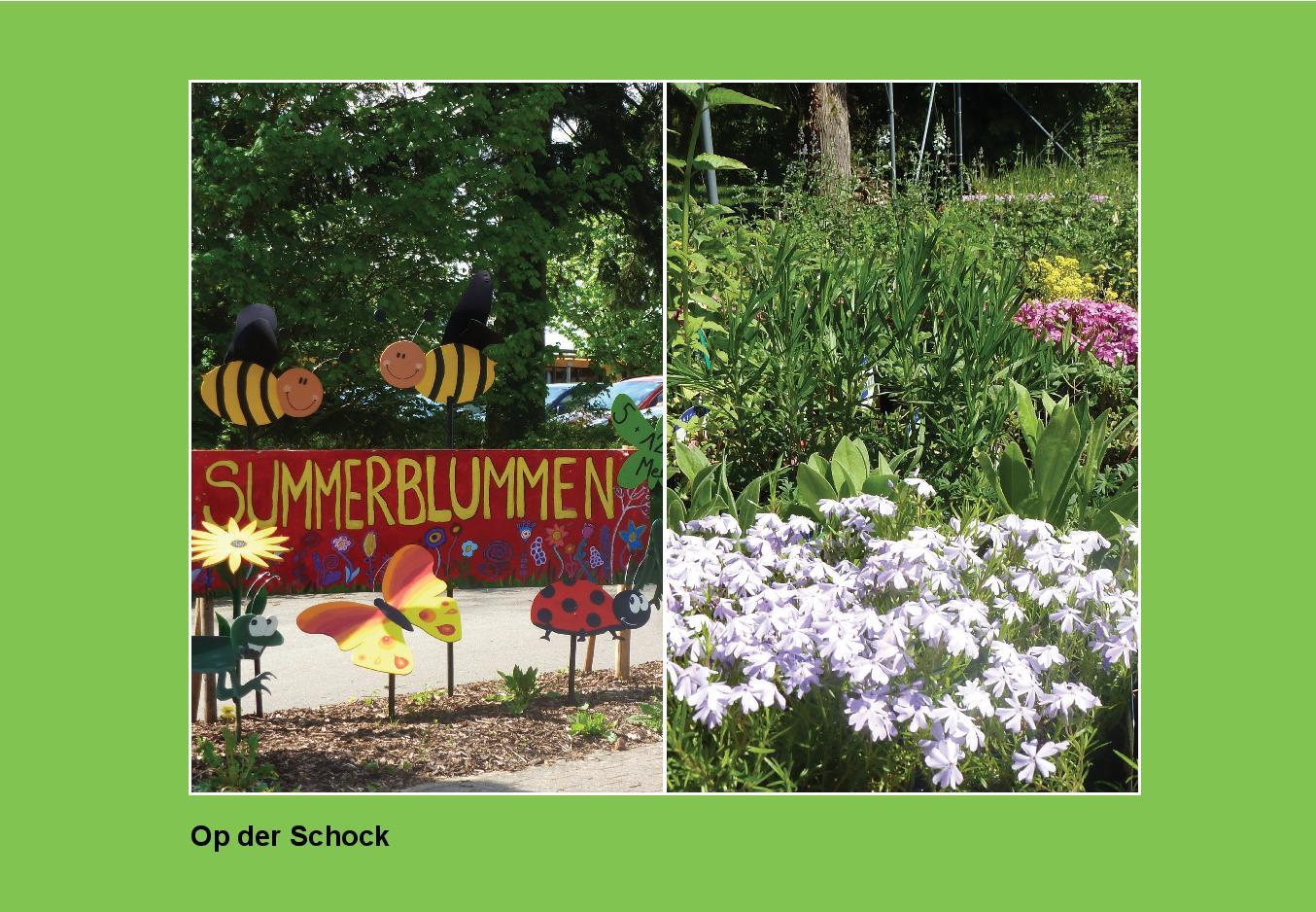 Op der Schock__4-page-001