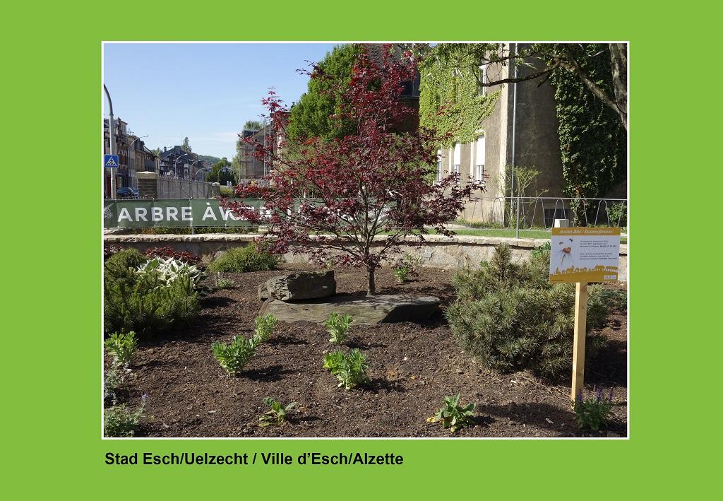 Ville d'Esch 3 RGB_meco.lu_1024x709