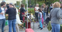 oekofestival news