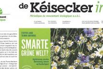 Titel Keisecker Info_maerz_news